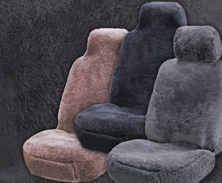 Groovy Seat Cover World Forskolin Free Trial Chair Design Images Forskolin Free Trialorg